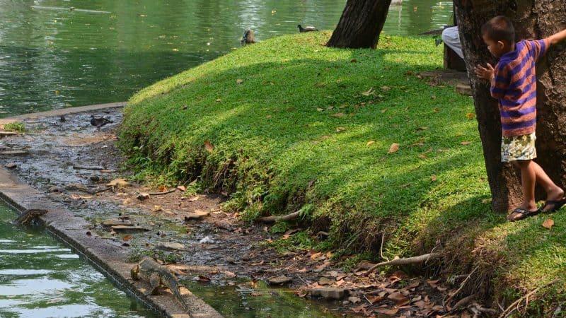 Parc Lumpini