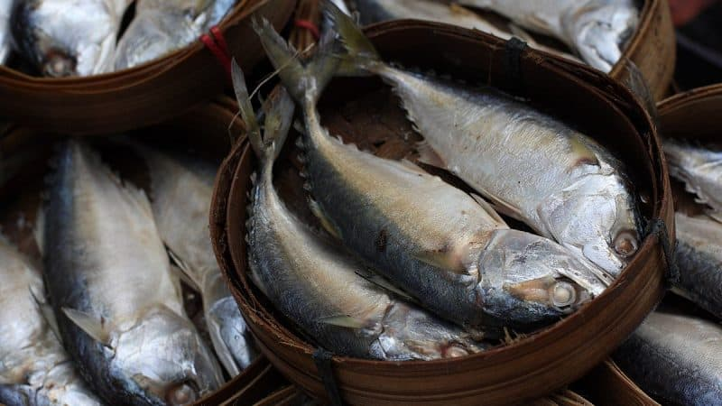 Chao Phrom Market