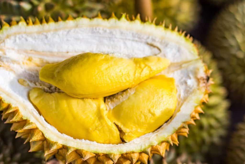 Durian - 12 fruits à essayer en Thaïlande