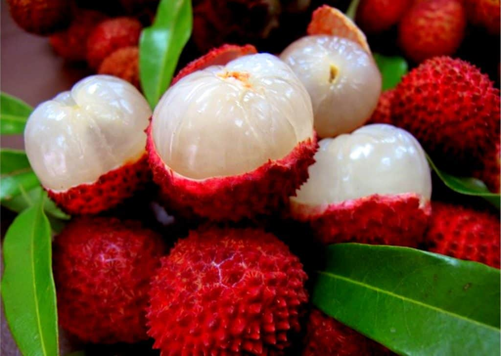 Litchi - 12 fruits à essayer en Thaïlande